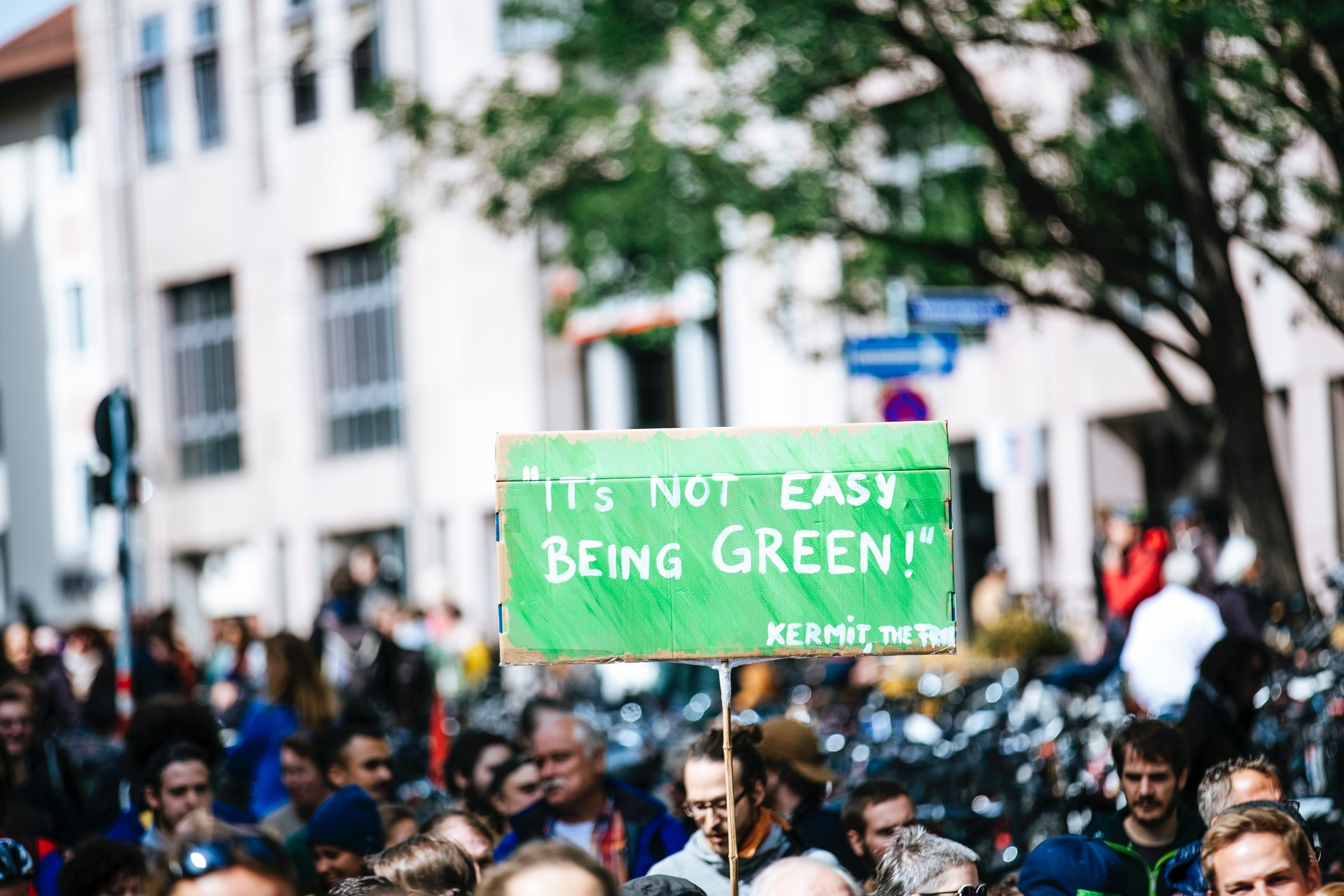 it's not easy being green sign